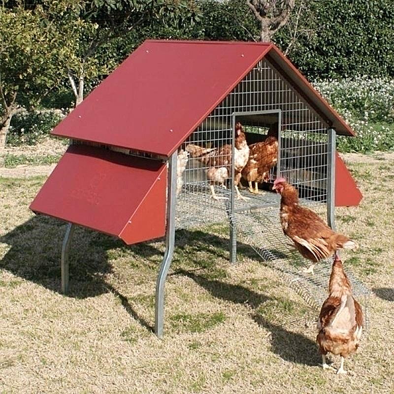 Ecoponedero jaula jardin gallinas. Cinegetica la mancha