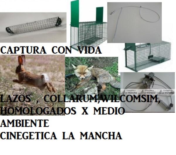 CONTROL_ANIMALES_5411dfd11d63b.jpg
